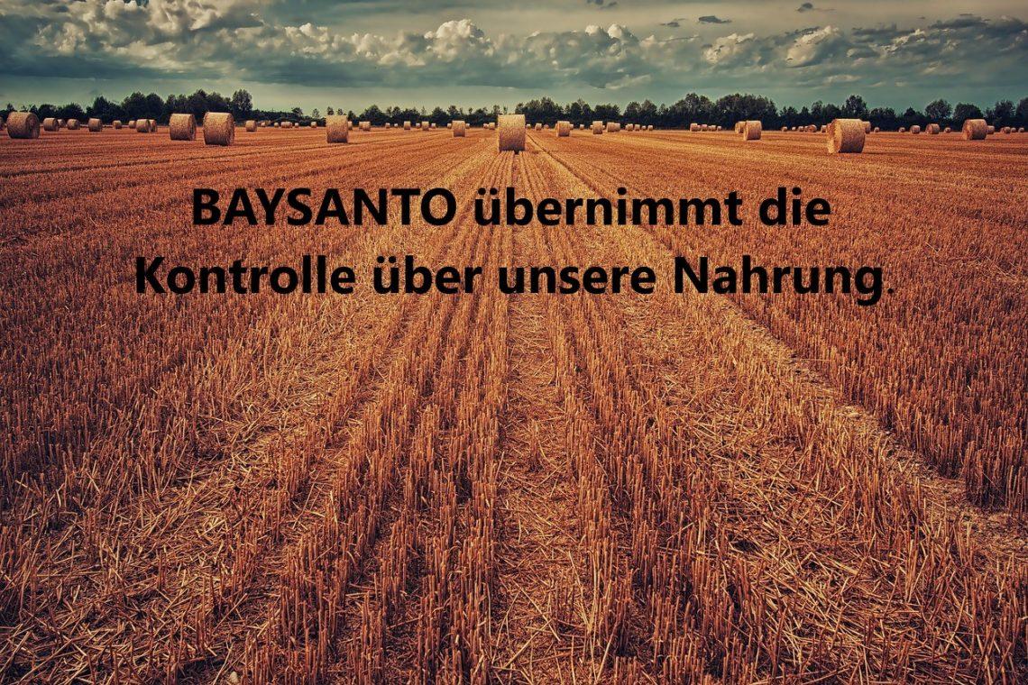 Stoppt die Monopolisierung von Saatgut durch 'Baysanto' ! Internationaler Aufruf gegen Patente auf Saatgut