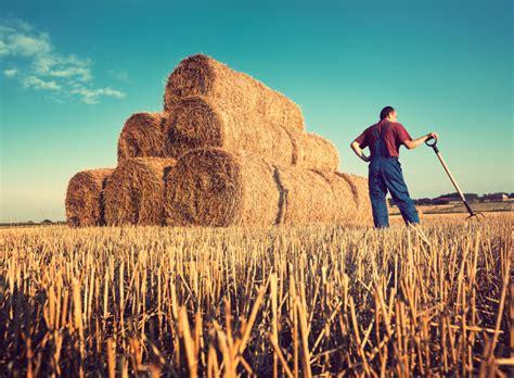 Mehr Schutz für Landwirt*innen sicherstellen – gemeinsame PM von KLB und KLJB