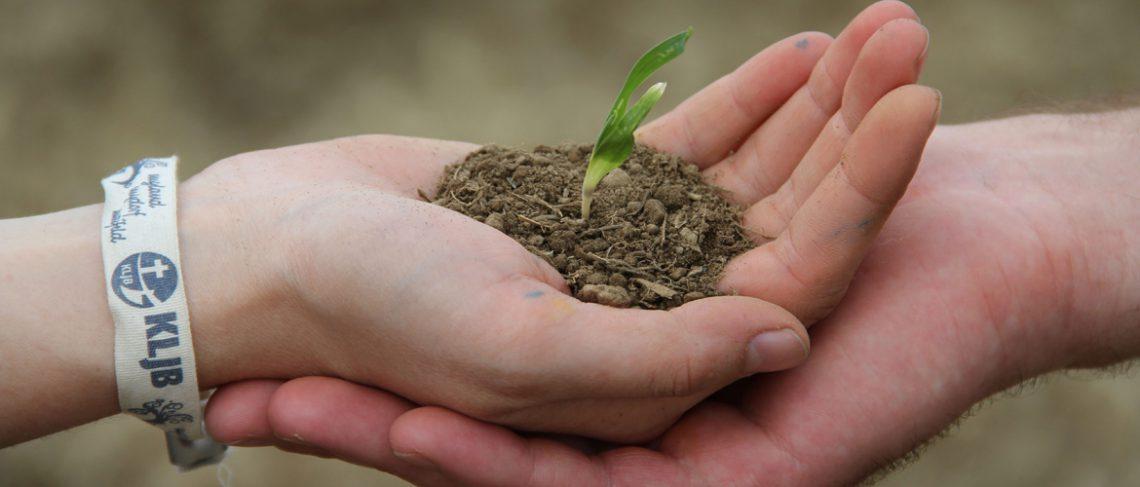 """""""Humusaufbau und Agroforst für eine klimagerechte Landwirtschaft"""""""