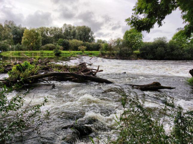 Flutkatastrophe: Unbürokratische Hilfe für Betroffene – DBV startet Spendenaktion